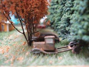 Farm tree row 2.JPG