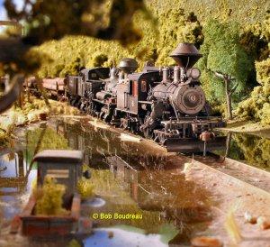 FNR Swamp train 3.jpg