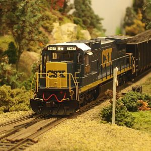 CSX Freight at Rural Crossing