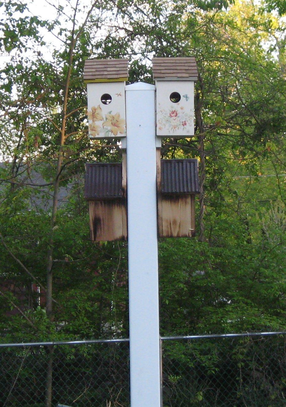bird_houses.jpg