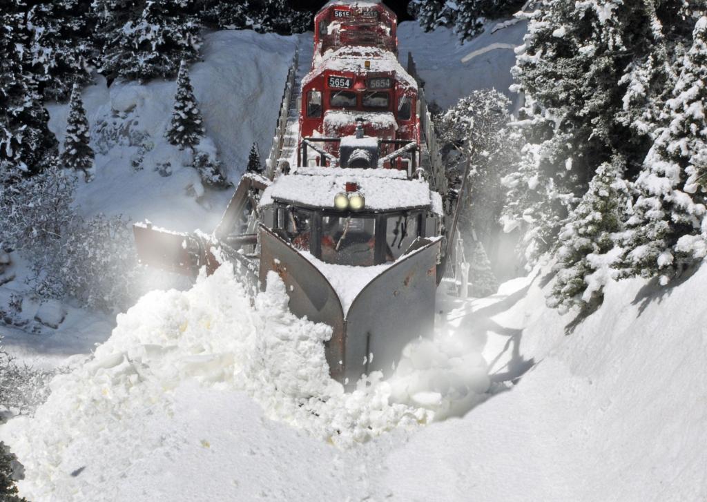 Snowshots_2a_2000_zps6e030b1e.jpg