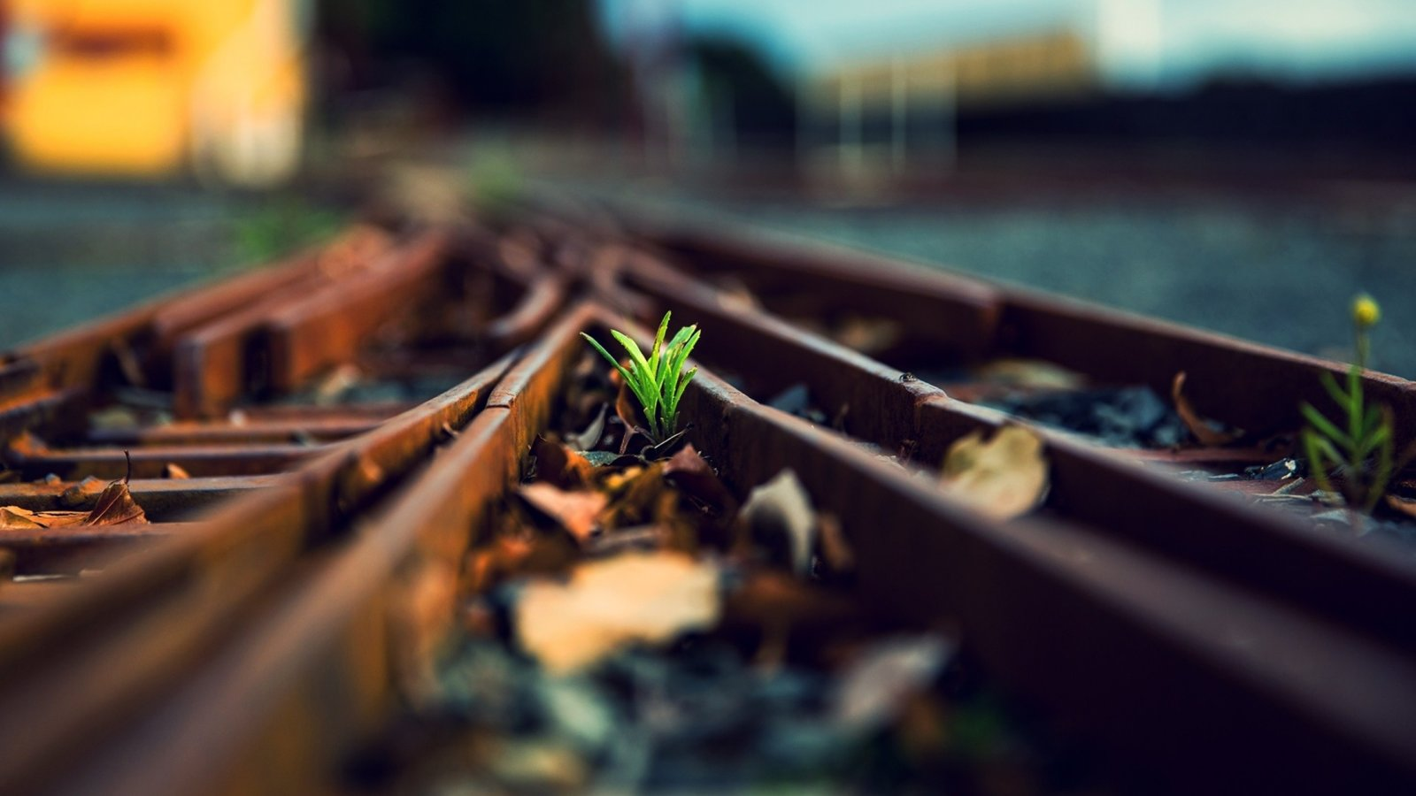 Train-Track-High-Resolution-Wallpapers.jpg